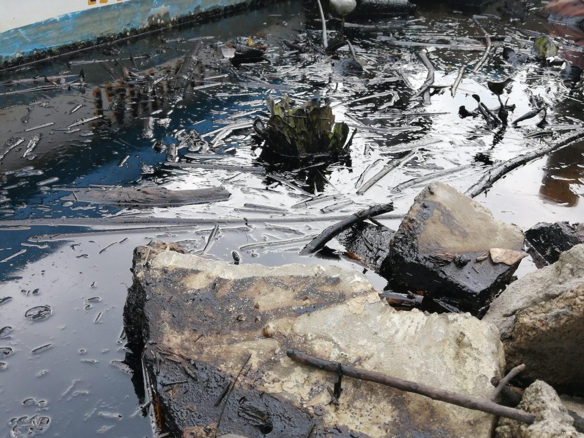 contaminación en el Pánuco