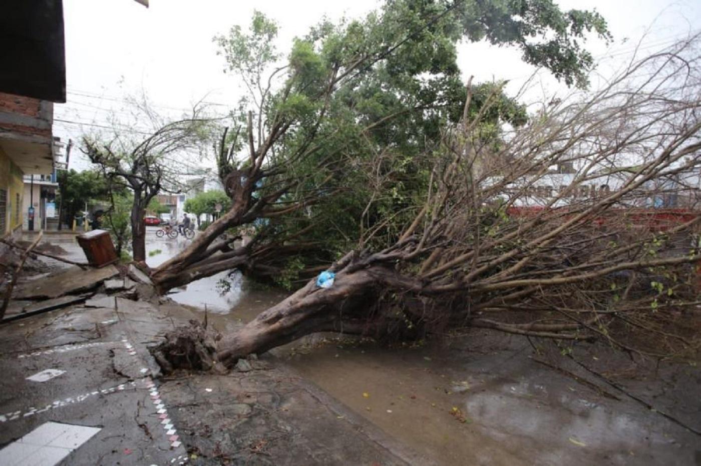 Huracán 'Pamela' dejó daños