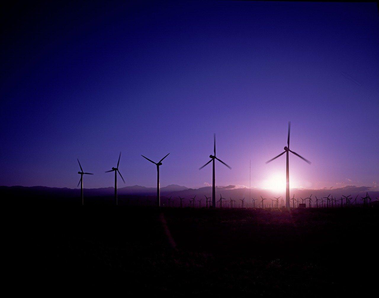 La directora de Salud Pública y Medio Ambiente de la OMS, María Neira, llamó a México a transitar cuanto antes hacia las energías limpias.