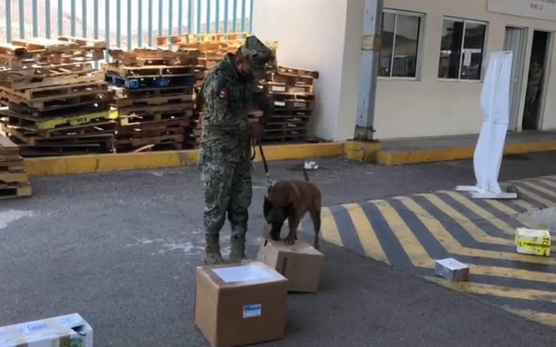 La Secretaría de Marina (SEMAR) decomisó más de 2 mil kilos de metanfetamina además de mariguana y combustible en Ensenada, Baja California.
